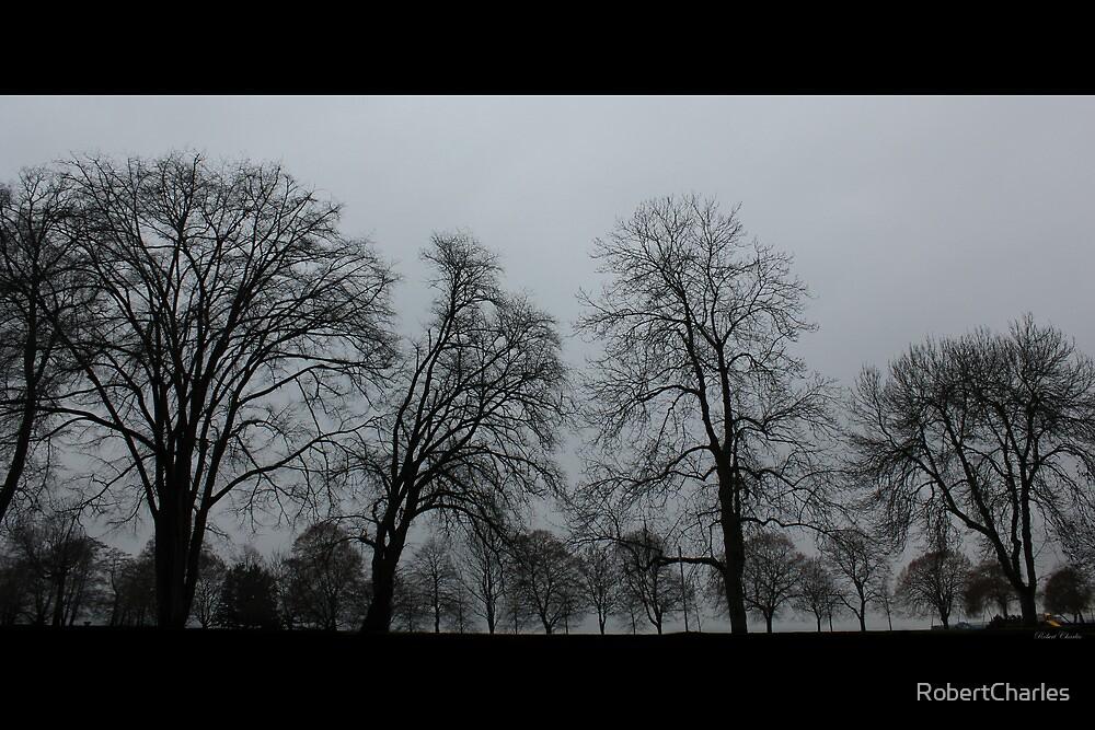 The Trees - Film Noir by RobertCharles