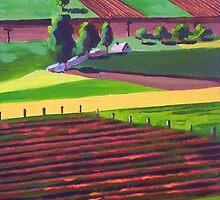 Fertile Valley by Dan Wilcox