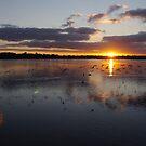 Bibra Lake Sunrise by Gnangarra