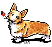 Corgi Sweetheart Photographic Print