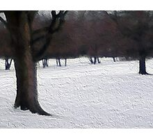 Midwest Winter Photographic Print