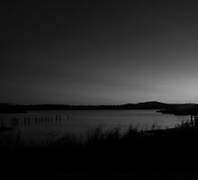 The last light of day is leaving me by Michael Bradley