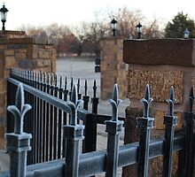 Frosted Fencing 10 by Carolyn  Fletcher
