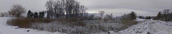 Winter wonderland  by Apollo Carter
