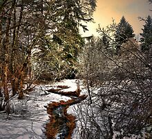 Color Me Gold by Charles & Patricia   Harkins ~ Picture Oregon