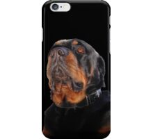 Regal and Proud Male Rottweiler Portrait Isolated iPhone Case/Skin
