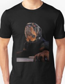 Regal and Proud Male Rottweiler Portrait Isolated T-Shirt