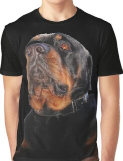 Regal and Proud Male Rottweiler Portrait Isolated Graphic T-Shirt