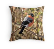 Not Only Robins Have a Red Breast! Throw Pillow