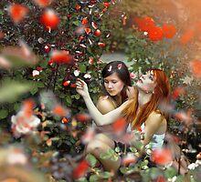 Red Roses by Marcin Łaskarzewski