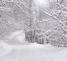 Winter Gateway by Gisele Bedard