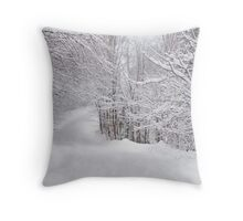 Winter Gateway Throw Pillow
