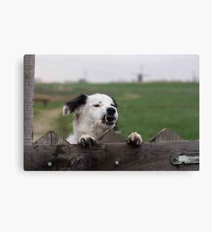 Beware of the dog  Canvas Print