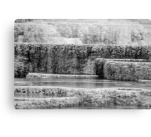 Yellowstone Hot Springs I Canvas Print