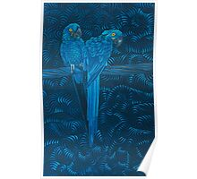 In the Parrots Azure - acrylic painting Poster