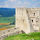 Spissky Castle, Slovakia by Dfilyagin