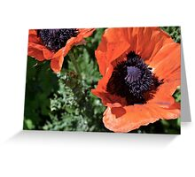 Utah Flowers Greeting Card