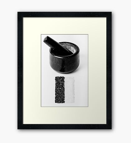 Salt & Pepper Framed Print