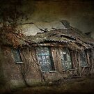 The old barn by Nicole W.