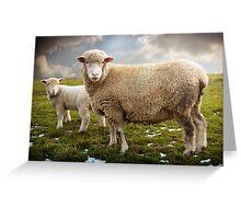 Snowy Sheep Greeting Card