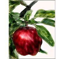 Apple Watercolor Poster, Print & Card Photographic Print