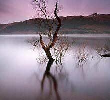 Loch Lomond Sunset by Maria Gaellman