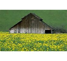 Barn Rural Life Farm Poster, Print & Card Photographic Print