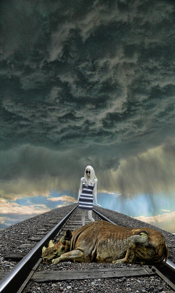 2674 by peter holme III