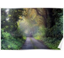 Once upon a country lane Poster