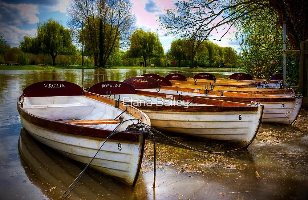 Shakespeare's boats at Stratford upon Avon, UK by Elana Bailey