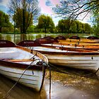 Shakespeare&#x27;s boats at Stratford upon Avon, UK by Elana Bailey