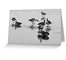on frozen pond Greeting Card