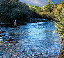 Afternoon Trout Fishing by Carolyn  Fletcher