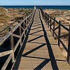 Beach Walkway by Kate Fortune