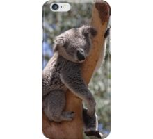 Australia's cutest - the koala iPhone Case/Skin