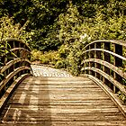 Cross The Bridge by EdwardKay