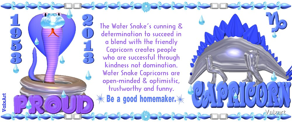 Chinese Zodiac water snake 1953 & 2013 born Capricorn  by Valxart