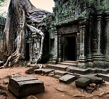 Standing Still, Cambodia by Michael Treloar