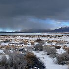 Wide Pyramid Lake Winter by SB  Sullivan