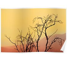 The Stirling Ranges Poster