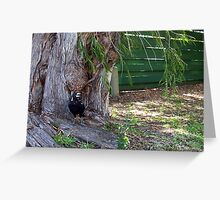 Magpie One - 31 12 12 Greeting Card