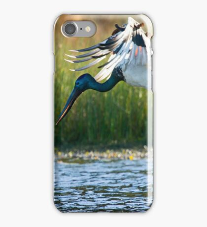 Jabiru vs Pelican iPhone Case/Skin