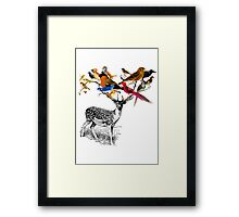 DEER BIRDY Framed Print
