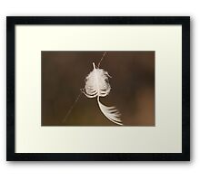 Feather Weight Framed Print