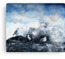 Seagulls on the rocks Canvas Print