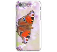 peacock butterfly on lavender iPhone Case/Skin
