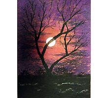 Purple Moonlit Sky Photographic Print