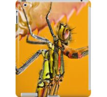 Red demoiselle dragonflies iPad Case/Skin