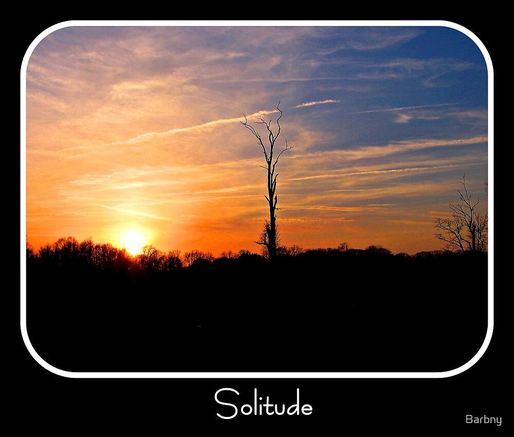 Solitude by Barbny