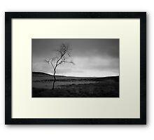 Tree between Curbar Edge and White Edge Framed Print